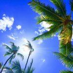 沖縄はリゾートの王様ハワイに勝てるか!? 両者を比べてわかる沖縄の民泊の可能性について