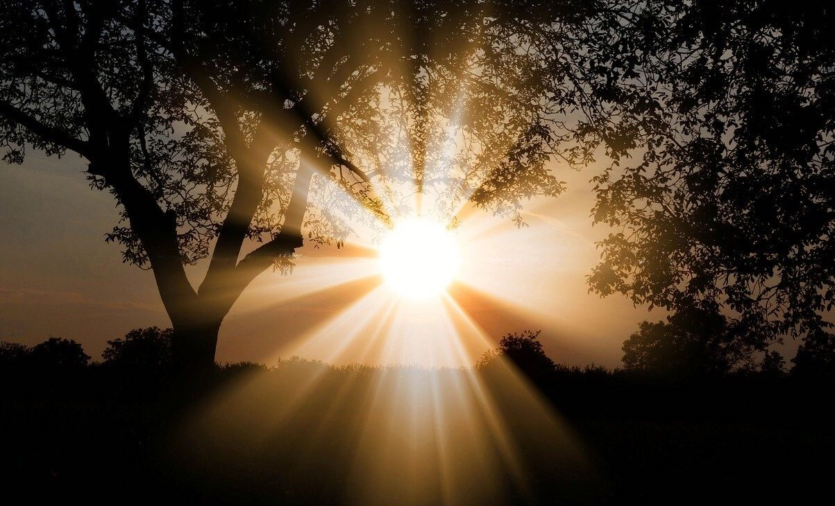sun-3130638_1280